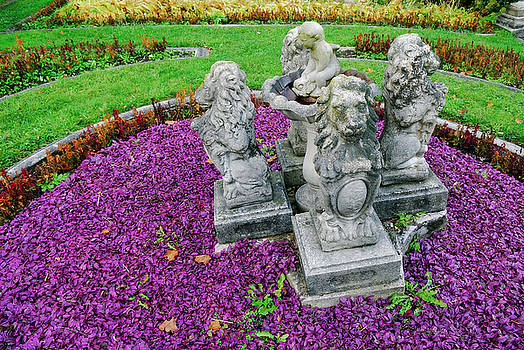 Reimar Gaertner - Purple ajuga in faded fall garden with lion statuary