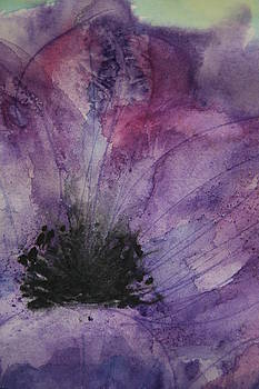 Purple Anemone 2 by Marna Edwards Flavell