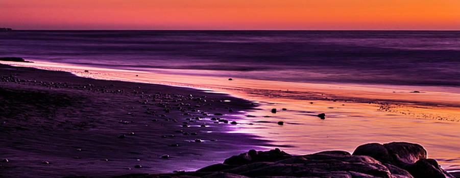 Purple Beach by Randy Bayne