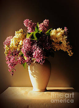 Purple by Binka Kirova