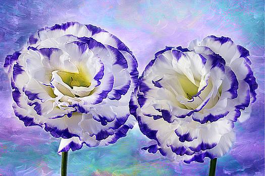 Purple Breeze by Marina Kojukhova