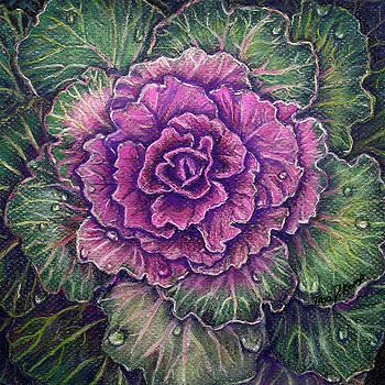 Purple Cabbage by Tara D Kemp