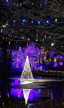 Purple Christmas by Barkley Simpson