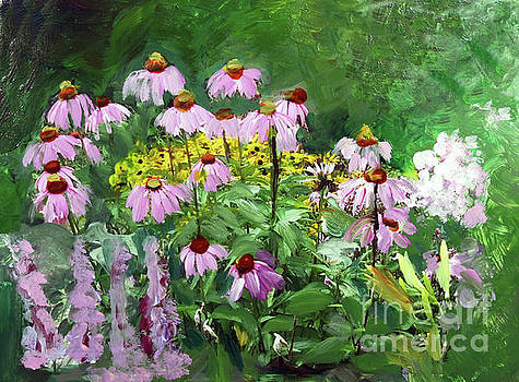 Purple Coneflower in Bloom by Donna Walsh