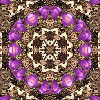 Valerie Kirkwood - Purple Crocus Kaleidoscope