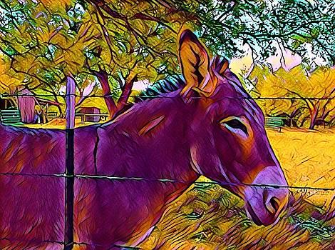 Purple Donkey by Patricia Rex