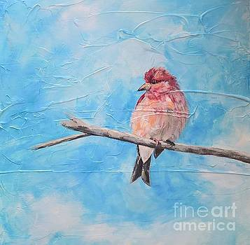 Purple Finch by Lisa Dionne
