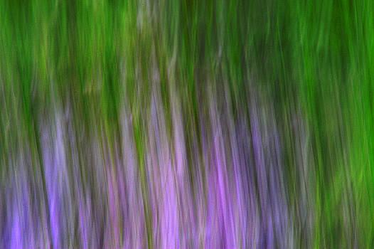 Purple Flames by Dick Pratt