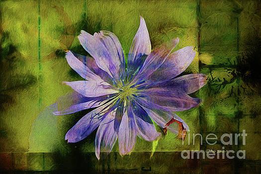 Deborah Benoit - Purple Flower Abstract