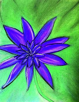 Purple Flower by Megan Howard