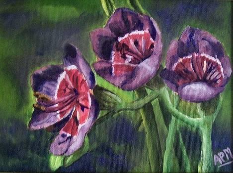 Purple Flowers by Antoinette Marlow
