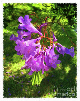 Purple Flowers by Larry Mulvehill