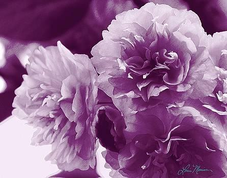 Purple Flowers on a Table by Lorrie Morrison