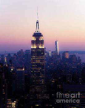 Purple Haze NYC by Sonja Quintero