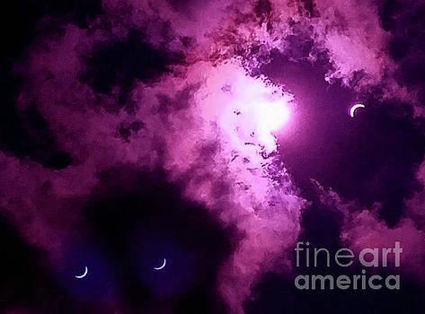 Purple Haze by Tom Carlton