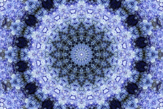 Purple Hydrangea Mandala by Janusian Gallery