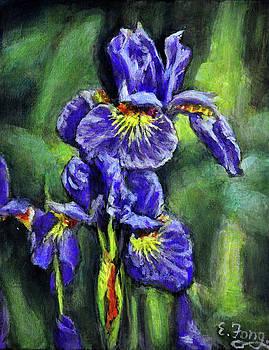 Purple Iries by Eileen  Fong