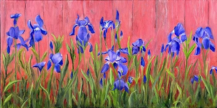 Purple Iris by Deborah Butts