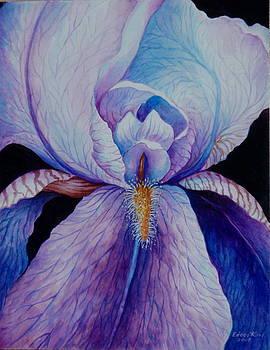 Edoen Kang - Purple Iris