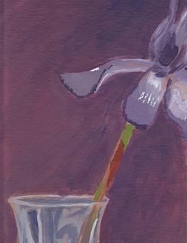 Purple Iris by Jen Lynn Arnold