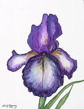 Purple Iris by Lisa  Marsing