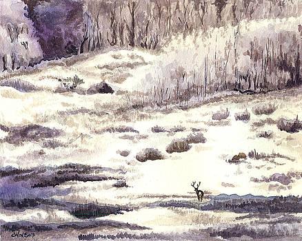 Purple Landscape by Christine Winship