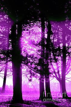 Purple Light by Kristi Beers-Mason