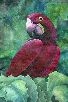 Purple Macaw by Marsha Friedman