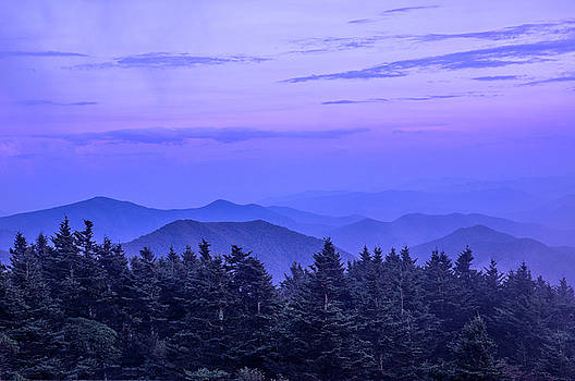Purple Majesty by Dawnfire Photography
