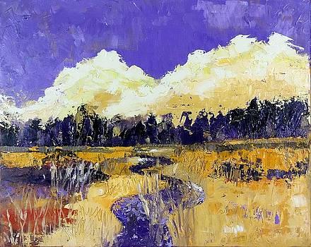 Purple Marsh by Coralie Donohue