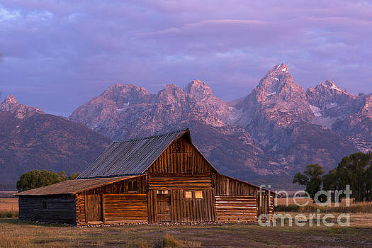 Purple Mountains Majesty by Deby Dixon