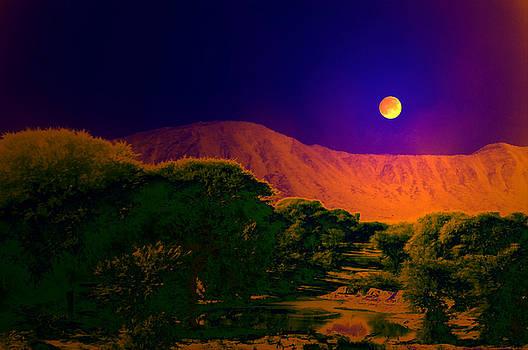 Bliss Of Art - Purple night colors