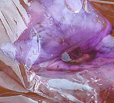 Purple Orange Drip-down by Mary Herring