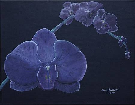 Purple Orchid by Terry Frederick