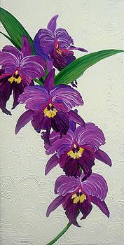 Purple Orchids by Juan Alcantara