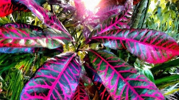 Purple Paradise by Lelia DeMello