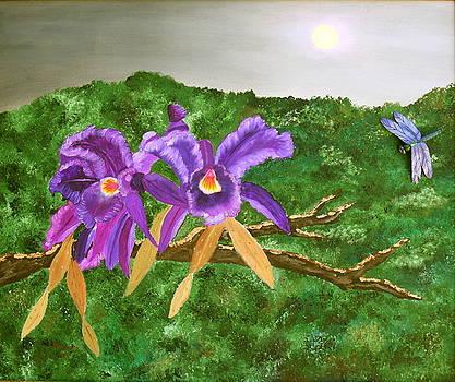 Purple Passion by Alanna Hug-McAnnally