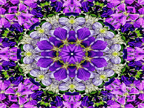 Purple Passion Floral Design by Carol F Austin