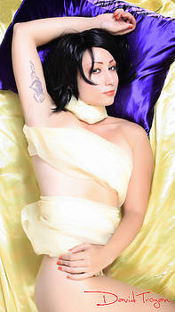 Purple Pillow by David  Troyan Photography Studios
