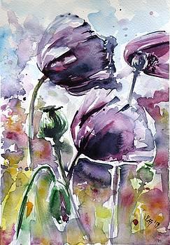 Purple poppies by Kovacs Anna Brigitta