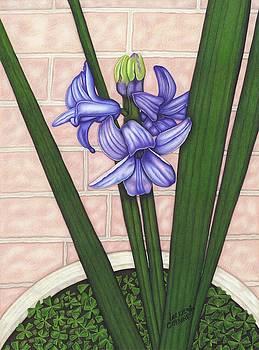 Purple Promise by Lorrie Cerrone