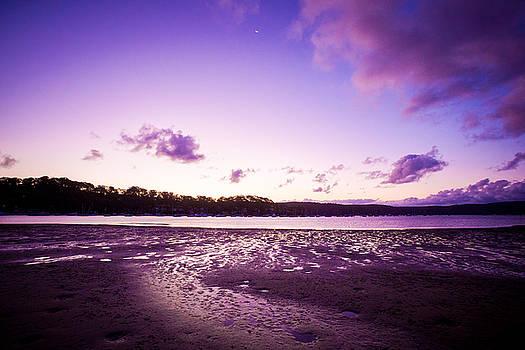 Purple Reign by Chris  Hood