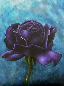 Purple Rose 4 by Brandon Sharp