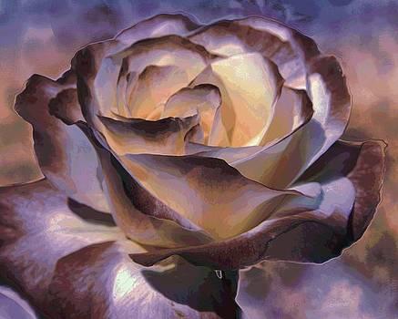 Purple Rose by Athala Carole Bruckner