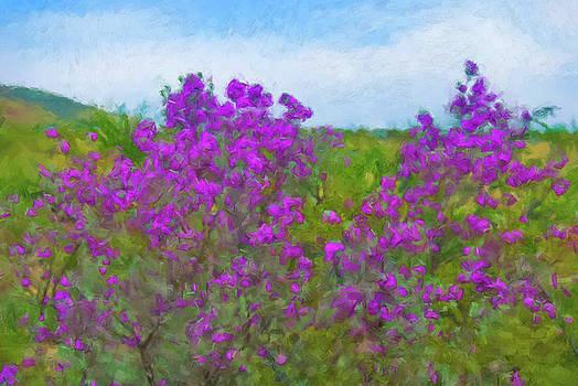 Purple Sage Big Bend by Gary Grayson