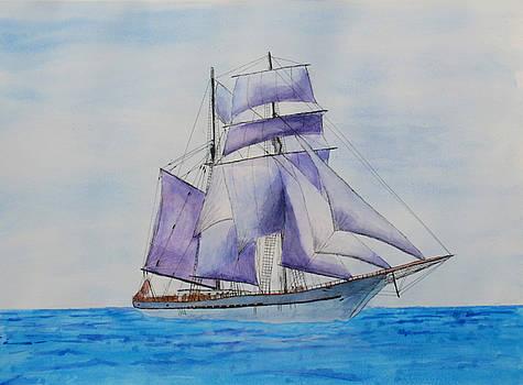 Purple Sails by Ron Enderland