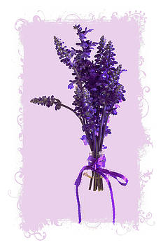 Sandra Foster - Purple Salvia - Digital Oil
