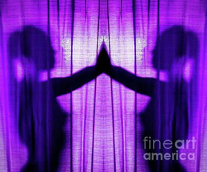 Purple Shadows by JB Thomas