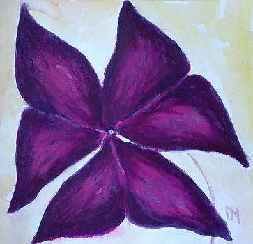 Purple Shamrock by Pete Maier