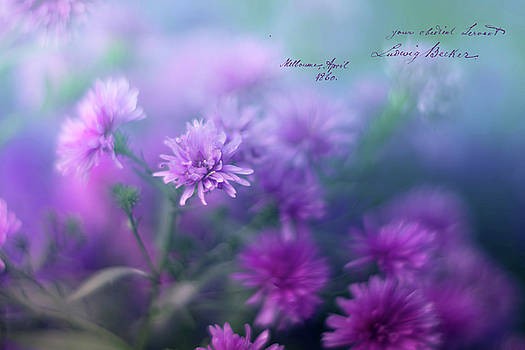 Purple Summer by June Marie Sobrito